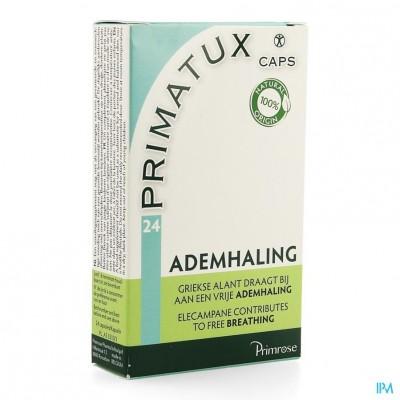 Primrose Primatux Caps 24